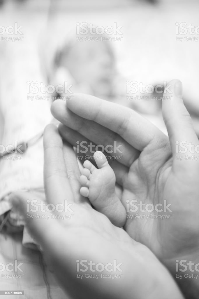 Parent's Hand Cupping Baby's Foot royalty-free stock photo