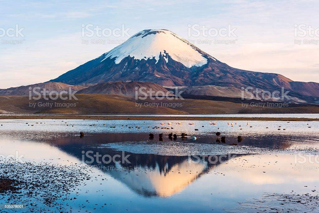 Parinacota Volcano reflected in Lake Chungara, Chile stock photo
