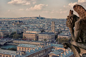 Notre-Dame's gargoyle in Paris panorama