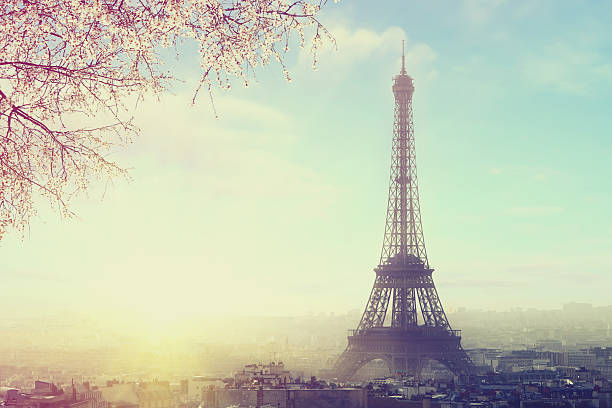 Paris cityscape with Eiffel tower at spring sunset stock photo