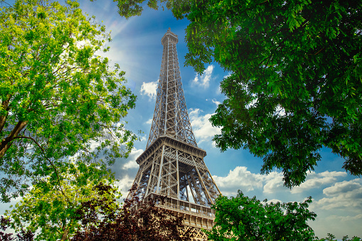 The Paris Eiffel tower through trees on a sunny day.