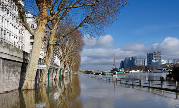 Inondations de Paris - Photo