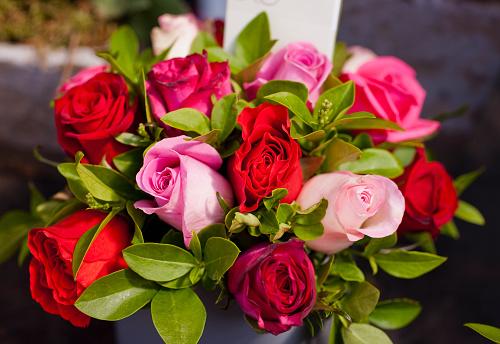 Paris Flower Market Roses