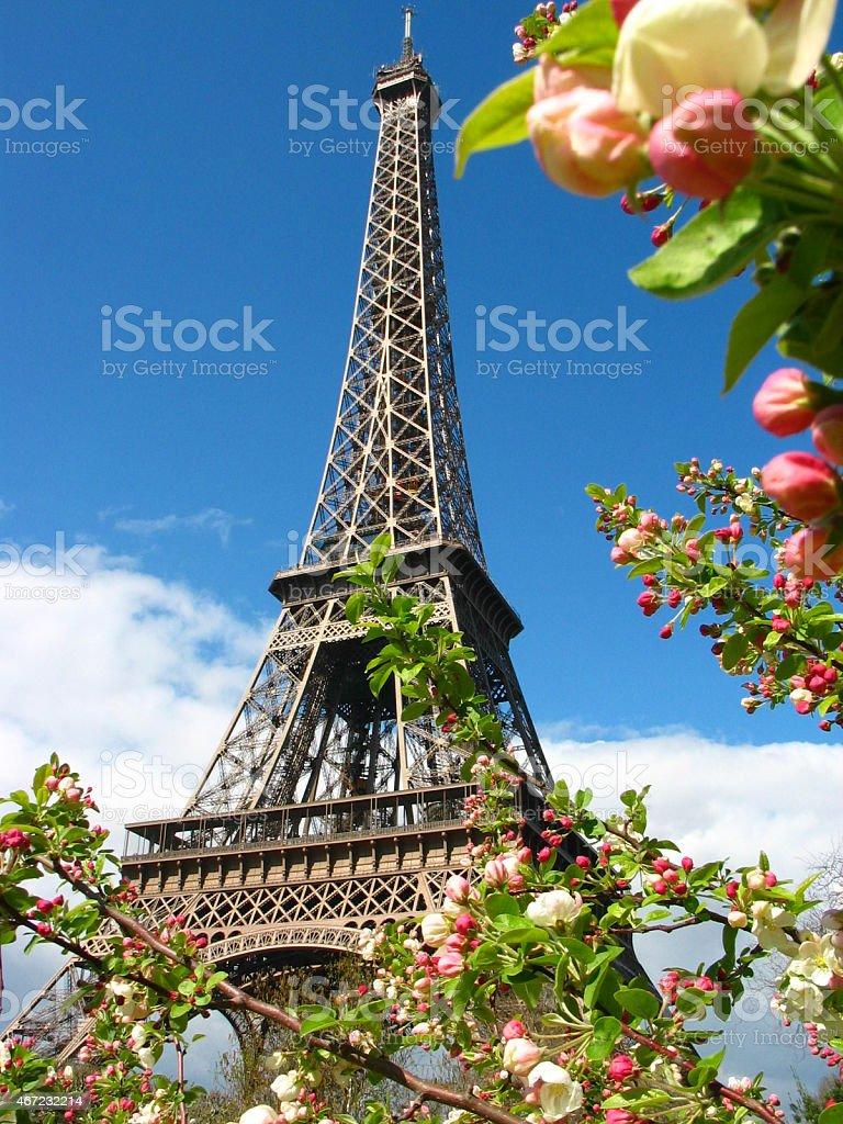 Paris, France - Eiffel Tower stock photo