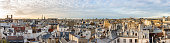 Panorama of the Paris, France skyline showing the traditional Haussmann architecture and rooftops