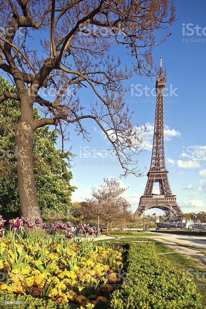 Paris in Spring royalty-free stock photo