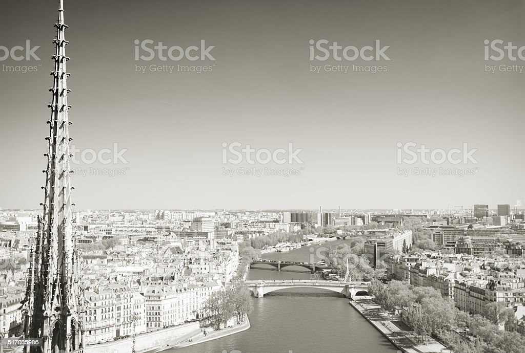 Paris rooftops from Notre Dame stock photo