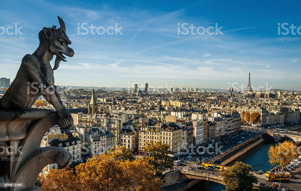 Paris, wide city view from the roof of Notre Dame stock photo