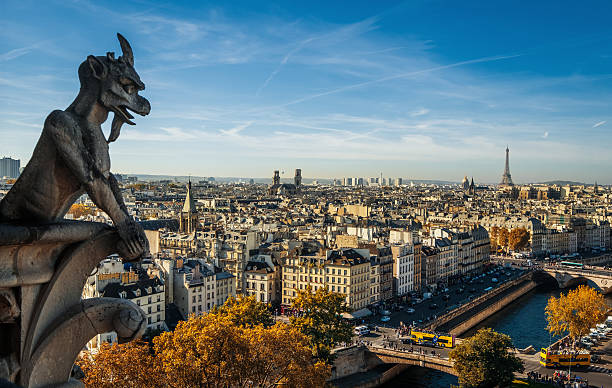 Paris, wide city view from the roof of Notre Dame – Foto