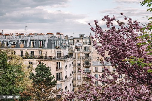 istock Parisian apartment building in spring 861384018