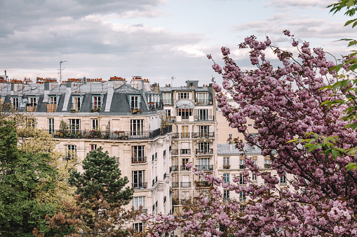 Parisian Apartment Building In Spring Stock Photo - Download Image Now
