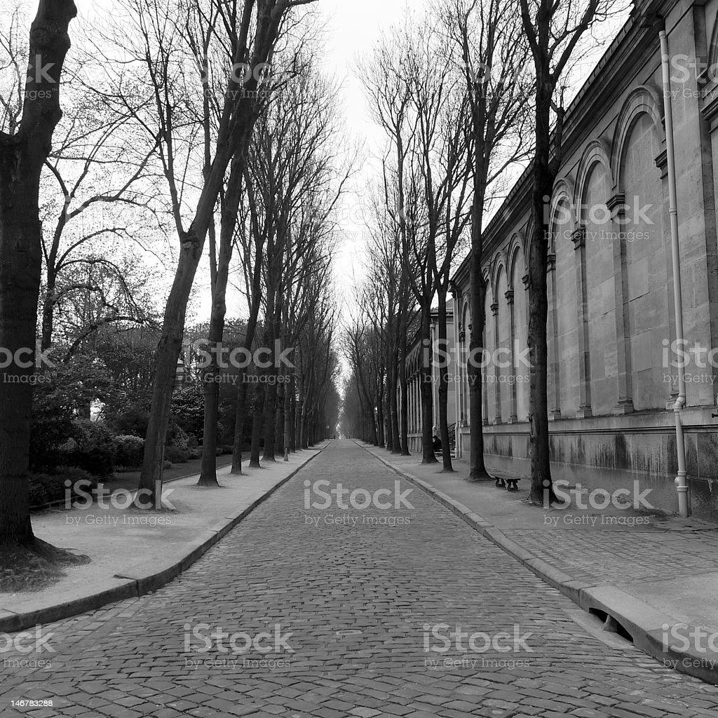 Parisian walkway stock photo