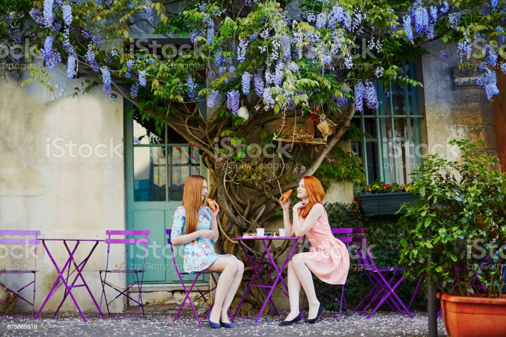 Parisian women drinking coffee together in outdoor cafe with wisteria ストックフォト