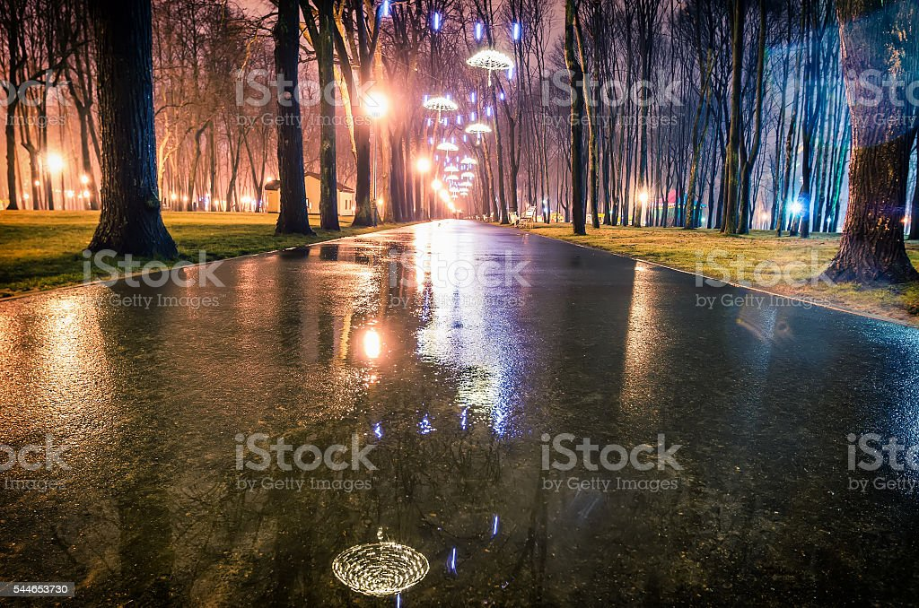 Park alley by night in Kharkiv stock photo