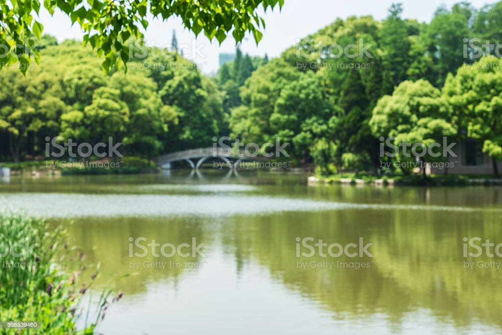 Park and lake defocused blurred abstract background photo libre de droits