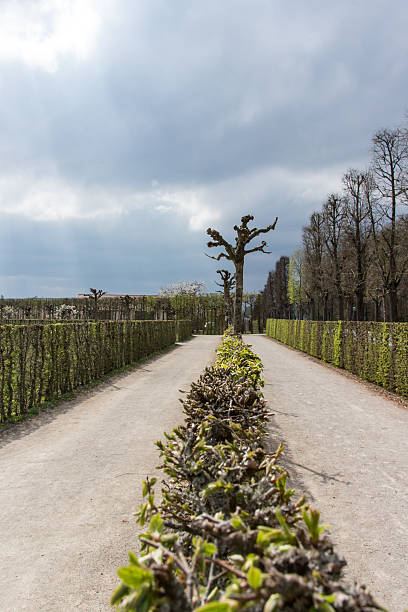 park at the eremitage, old palace in bayreuth, germany, 2015 - eremitage stock-fotos und bilder
