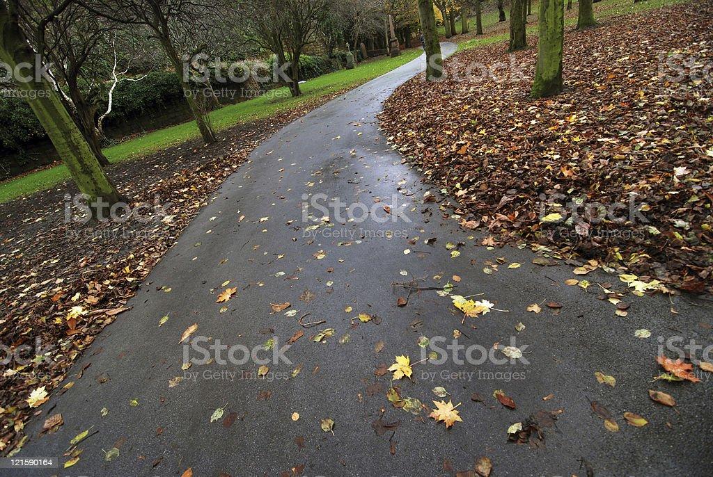 Park autumn path royalty-free stock photo
