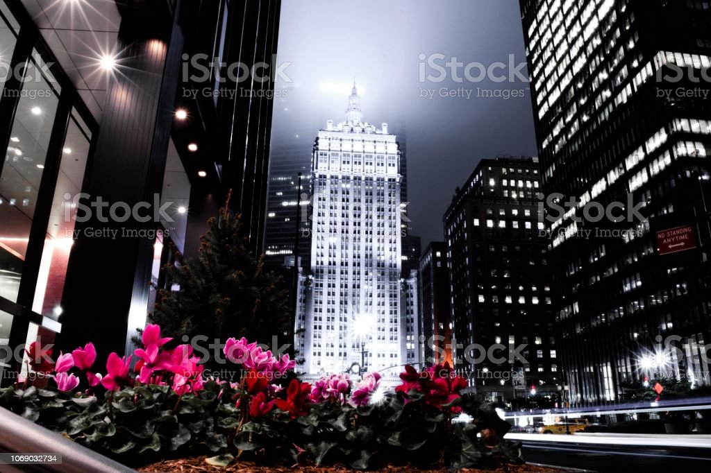 Park Avenue with Flowers stock photo