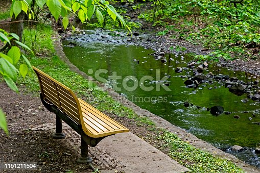 Tranquil Scene, sit and relax on a park bench facing a small babbling brook. Green reflection in brook of surrounding foliage.  Image shot with Canon 5D Mark 4, 24-105mm f/4L IS.