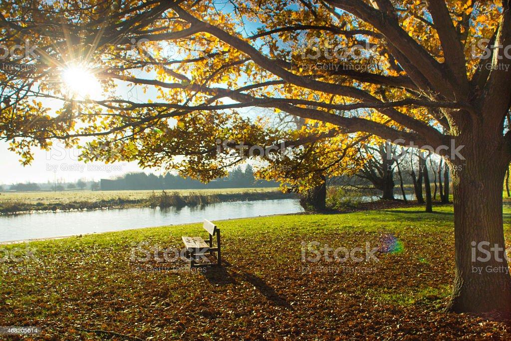 Park bench at Huntingdon, Cambridgeshire stock photo