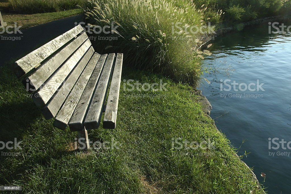 Park Bench by Pond royalty-free stock photo