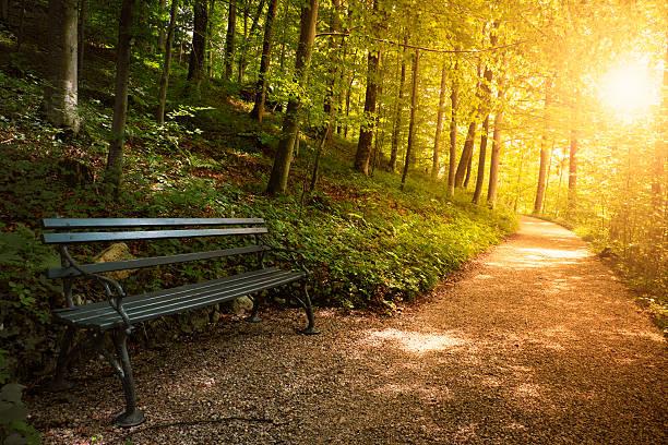 park bench im Herbst – Foto