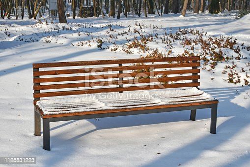 Park bench in the woods winter time