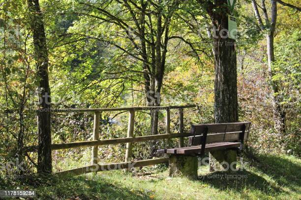 Photo of A park bench next to a tree