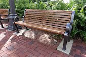 Park bench on brick patio at community public park. Large fern plants grow behind the benches.