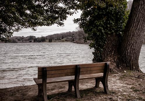 Park Bench on the shore of Lake Junaluska in North Carolina