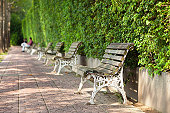 winter landscape of the park with empty benches for rest located in one row one after another with a retro effect