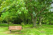 istock Park bench 1248893875