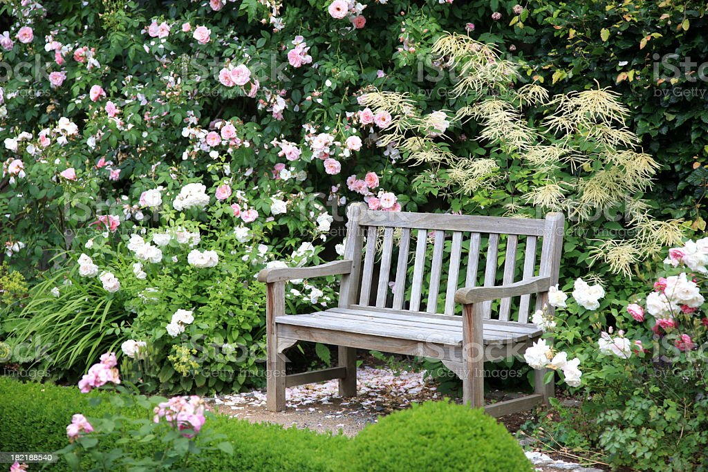 Park bench sitting vacant near bushes of flowers stock photo