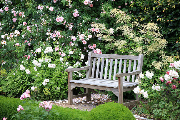 park bench sitting vacant near bushes of flowers - zitbank stockfoto's en -beelden