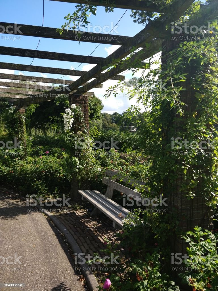 Excellent Park Bench With Pergola Wooden Bench And Various Garden Forskolin Free Trial Chair Design Images Forskolin Free Trialorg