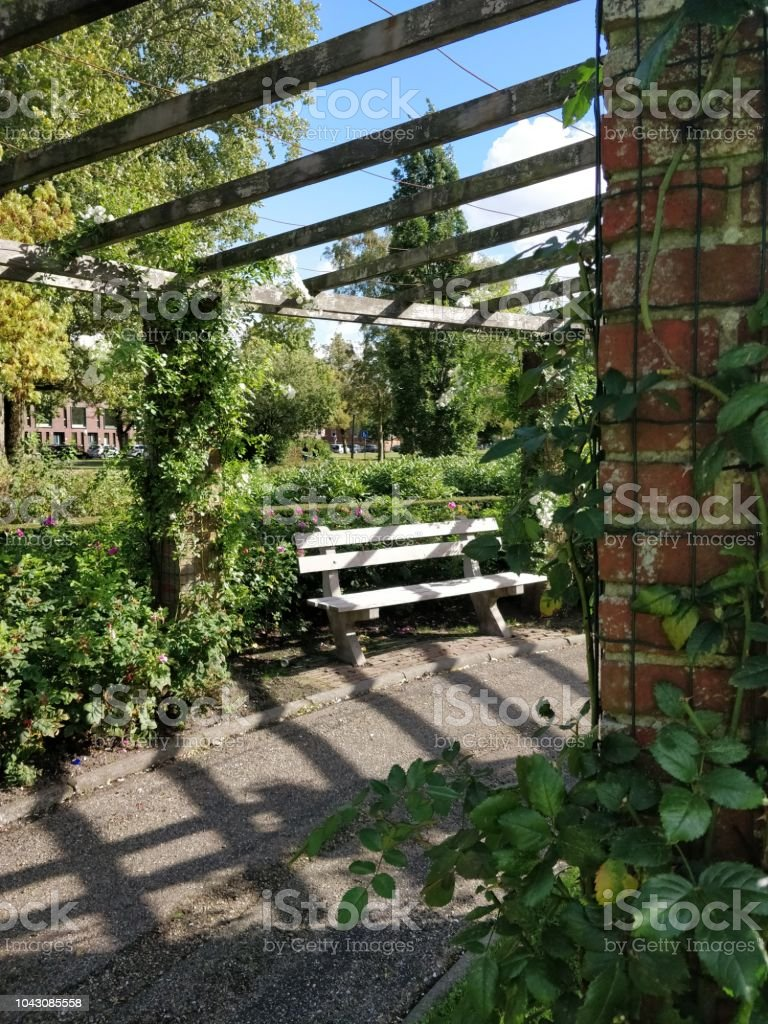 Amazing Park Bench With Pergola Wooden Bench And Various Garden Forskolin Free Trial Chair Design Images Forskolin Free Trialorg
