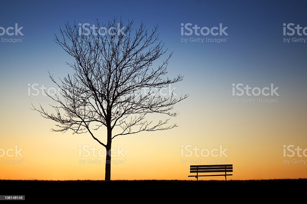 Park Bench with Tree royalty-free stock photo