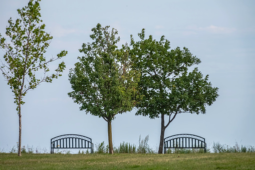 Park benches at a distance from each other along Lake Michigan