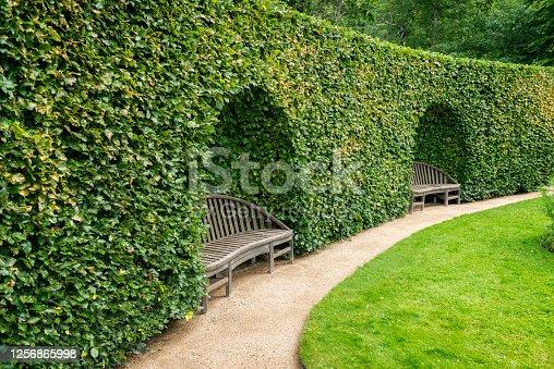 Old wooden park benches inside large hedge in Gothenburg botanical garden.