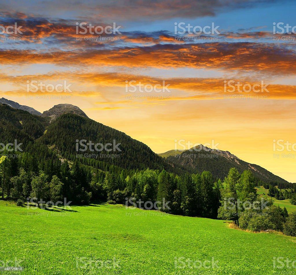 Park Ela, canton Graubunden in Switzerland stock photo