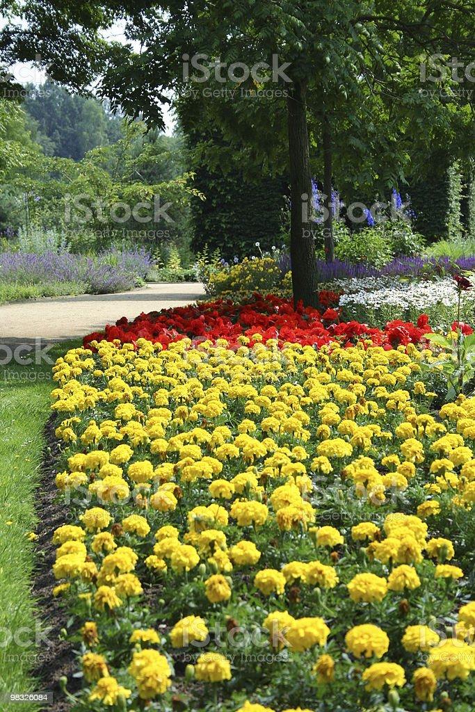 park flower royalty-free stock photo