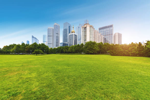 Park Grassland in qingdao ,china stock photo