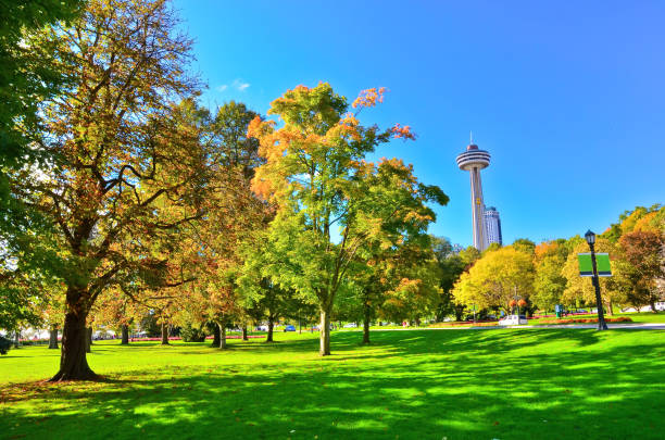 Park in autumn in Niagara Falls, Canada View of a park in autumn in Niagara Falls, Canada rainbow bridge ontario stock pictures, royalty-free photos & images