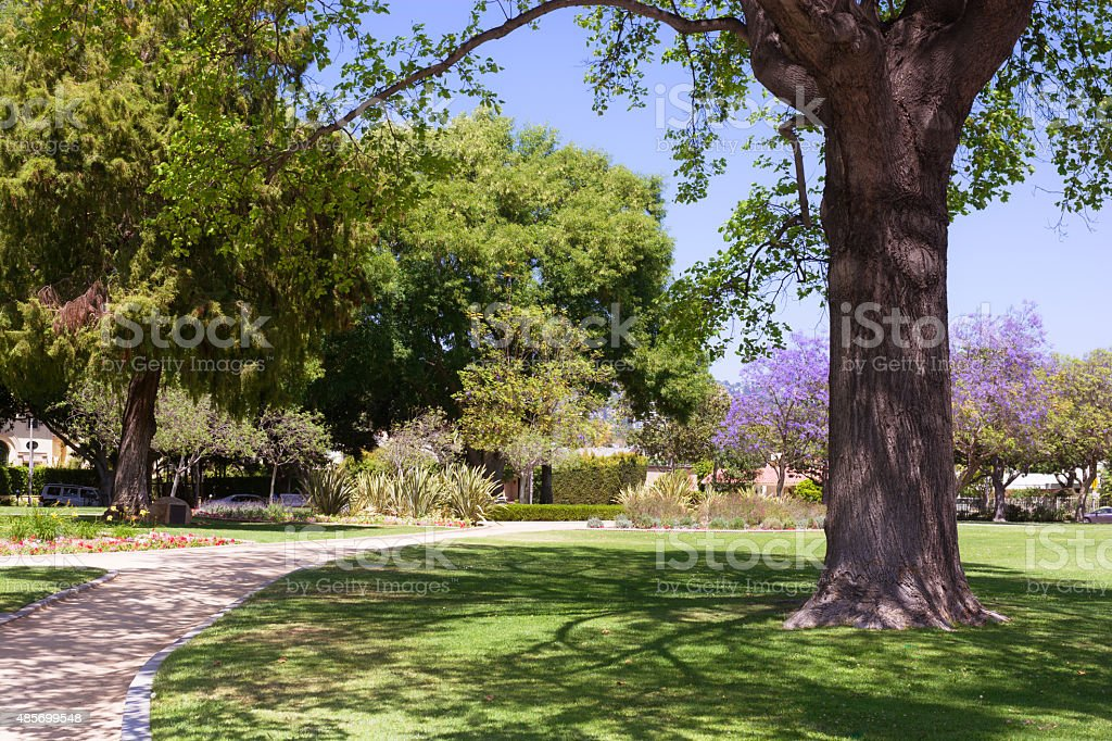 Park in Beverly Hills, CA along Santa Monica Boulevard stock photo