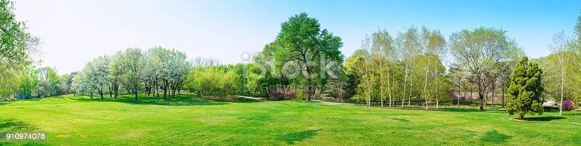 Park in early spring.Park in early spring.