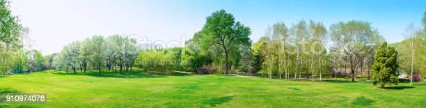 Park in early spring picture id910974078?b=1&k=6&m=910974078&s=612x612&h=jk52r1nvqtdbheevqhtxiuq gydhgxwvpj7obijxai4=