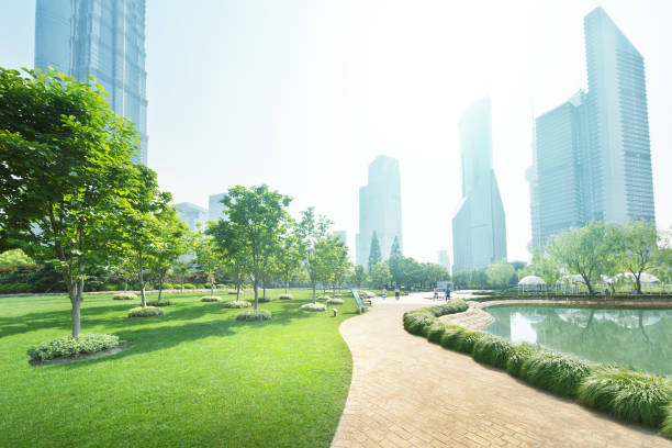 park in lujiazui financial center, shanghai, china - public park stock photos and pictures