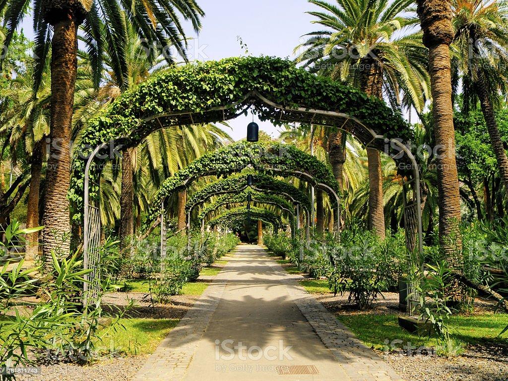 Park in Santa Cruz de Tenerife stock photo
