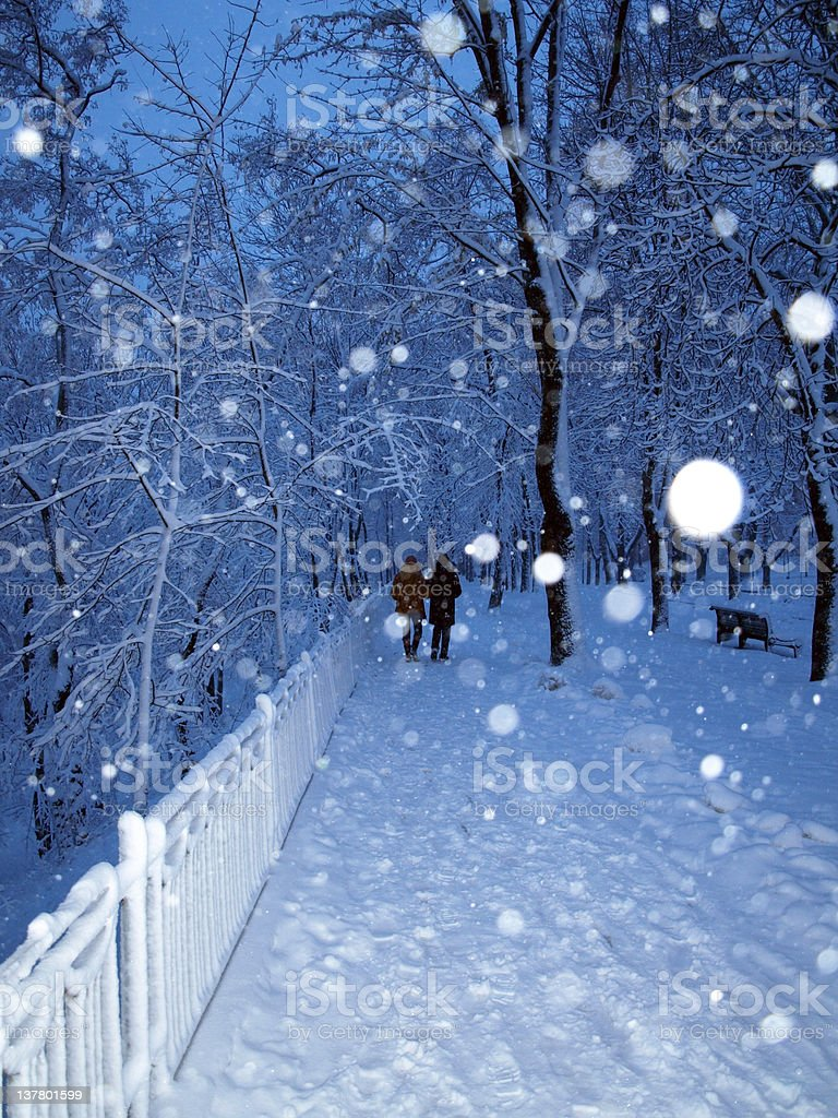 Park in snowfall royalty-free stock photo