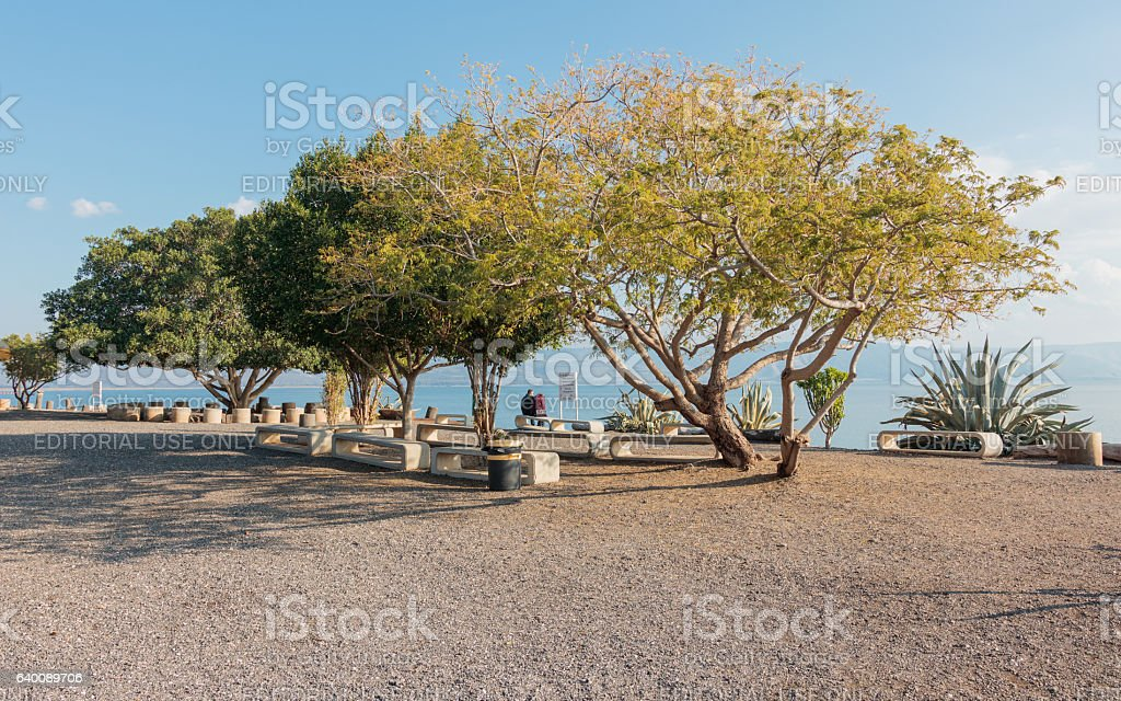 Park in the Catholic Franciscan monastery in Capernaum stock photo